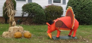 Thanksgiving Pig 003
