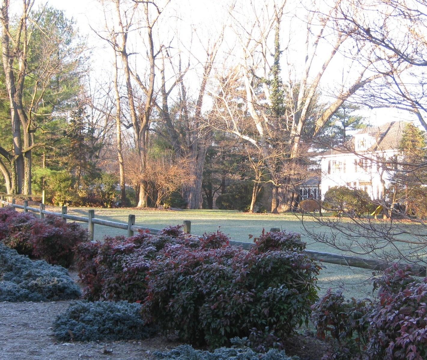 december morning images