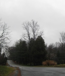 Dismal Day 028