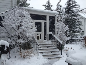 Snow0371