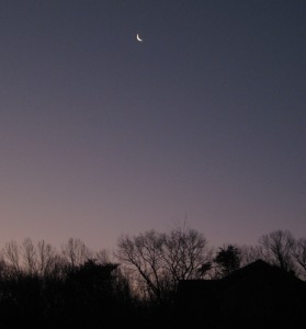 January 8 006