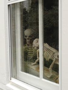 Skeletons 002
