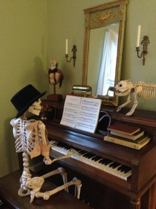 skeletons 021