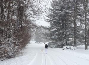 Big Snow 031