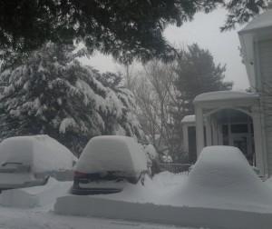 Blizzard 16 043