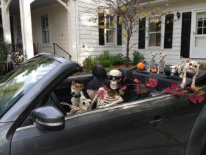 skeleton-crew-027