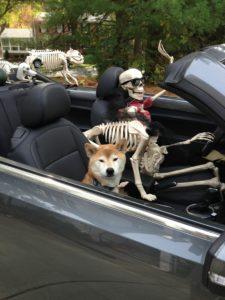 skeleton-crew-029